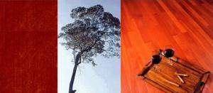 Pisos de madeira Massaranduba
